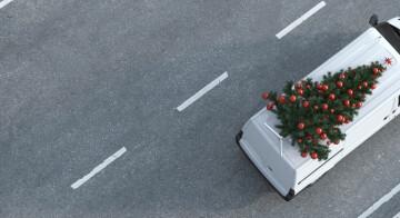So gelingt der Weihnachtsbaum-Transport mit dem Auto