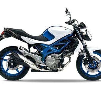 Klasse A offen / Suzuki Gladius
