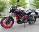 Yamaha MT 07 Moto Cage